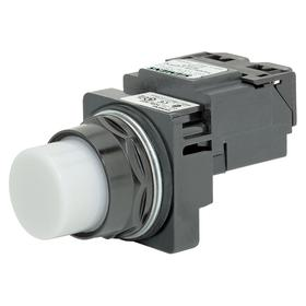 Siemens Pilot Light Complete Unit: 480V AC, Transformer, White, For 6 V DC, Includes Bulb, For LED, Epoxy Coated, LED