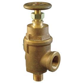 Adjustable Relief Valve: Bronze, 1 1/2 in Inlet Size, NPT, 50 psi Factory Set Pressure, 8 5/8 in Overall Ht