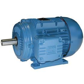 WEG AC Motor: Three Phase, 1 hp Output Power, 1730 Nameplate RPM, 80 NEMA Frame Size, 460V AC, TEFC, CW/CCW, Ball