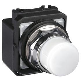 Pilot Light: 120V AC, 2.18 in Overall Lg, Transformer, White, For 6.6 V AC, Includes Bulb, Operator Interface, Silver