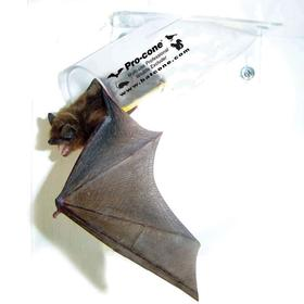 Bird Barrier Removal Cone: Bats/Flying Squirrels/Mice/Rats