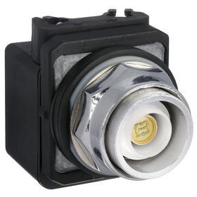 Push Button Operator: Illuminated, Flush Operator, Momentary, Transformer, Clear, 30 mm Operator Dia, Chrome, Std Body