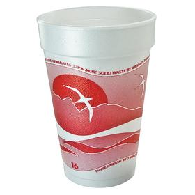Disposable Cup: Horizon, Cold/Hot Cup, Unwrapped, 16 fl oz Cup Capacity, Foam, 1000 PK