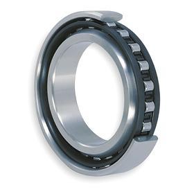 NTN Cylindrical Roller Bearing: Metric, 52100 Ring Material Grade, Steel, Open, NU311 Bearing Trade, 55 mm Bore Dia