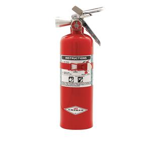 Amerex Rechargeable Fire Extinguisher: Class A, B, & C Fire Class, 5B:C UL Rating, 5.00 lb Capacity, Steel, 4 1/4 in Dia