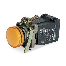 Schneider Electric Pilot Light: 120V AC, 3.07 in Overall Lg, Chrome Plated, Orange, Chromium, Metal, Chrome, Screw Clamp