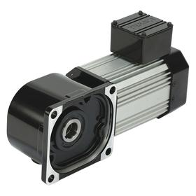 Bison AC Gear motor: 230V AC/400V AC/460V AC, 1/8 hp Input Power, 17 RPM Nameplate RPM, 380 in-lb Full-Load Torque, Ball