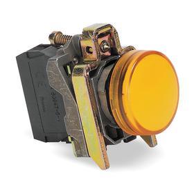 Schneider Electric Pilot Light: 24V AC/DC, 2.13 in Overall Lg, Chrome Plated, Orange, 100000 hr Avg Life, Chromium
