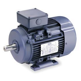 Regal AC Motor: Three Phase, 10 hp Output Power, 3535 Nameplate RPM, DF132S NEMA Frame Size, 230V AC/460V AC, TEFC