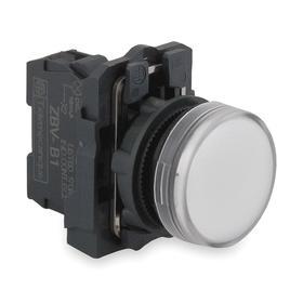 Schneider Electric Pilot Light: 24V AC/DC, 2.13 in Overall Lg, Metal, White, 100000 hr Avg Life, Plastic, Screw Clamp